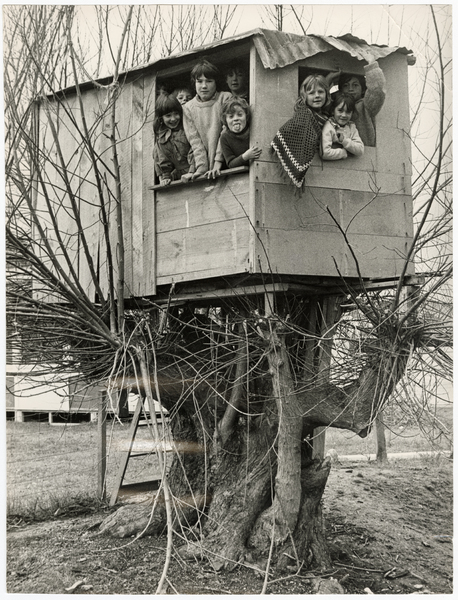 Duvauchelle School tree house