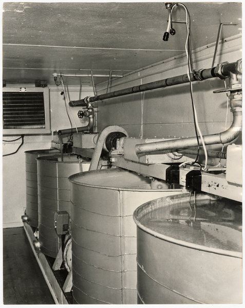 Honey creaming vats