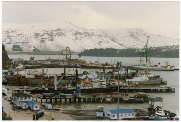 Snow covered hills behind Lyttelton Harbour