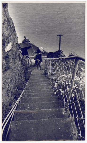Godley Head lighthouse steps