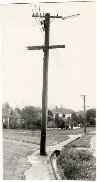 Aynsley Terrace telegraph pole