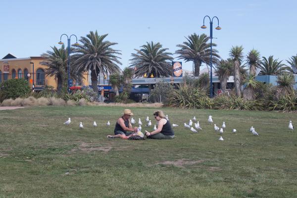 Picnic by Marine Parade, New Brighton