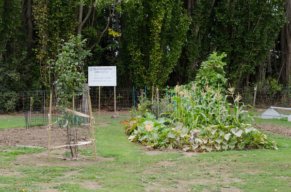 Garden Food Forest at Halswell Domain