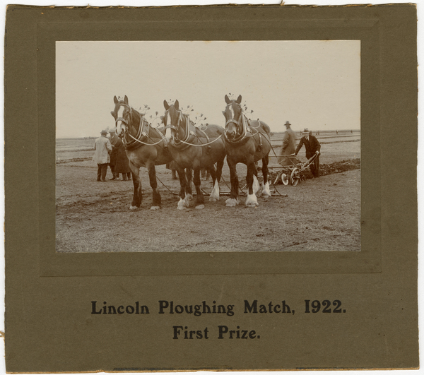 Lincoln Plowing Match, first prize