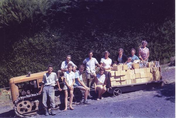 Family and pickers with boxes of apricots