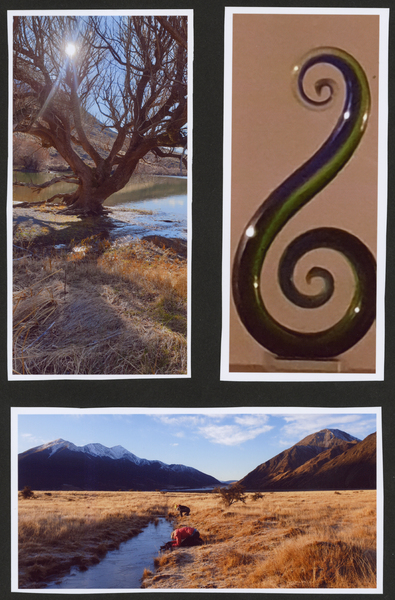 3 photos of Tree by Lake Pearson, glass koru, stream
