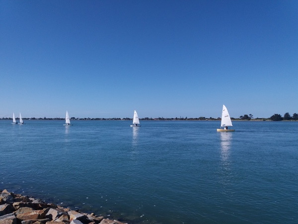 A beautiful view of the sailing Dinghies in the Sumner Beach.