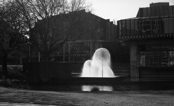 The Ferrier Fountain and the Christchurch Town Hall