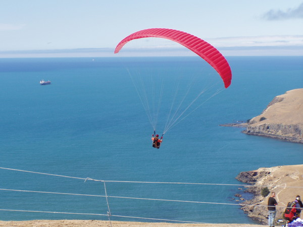 Paragliding from Summit Road
