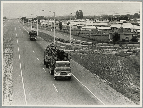 Logging trucks on the northern motorway