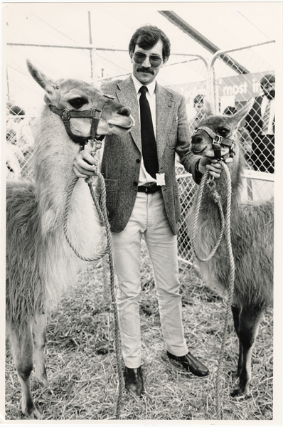 Chris Buckley with llamas