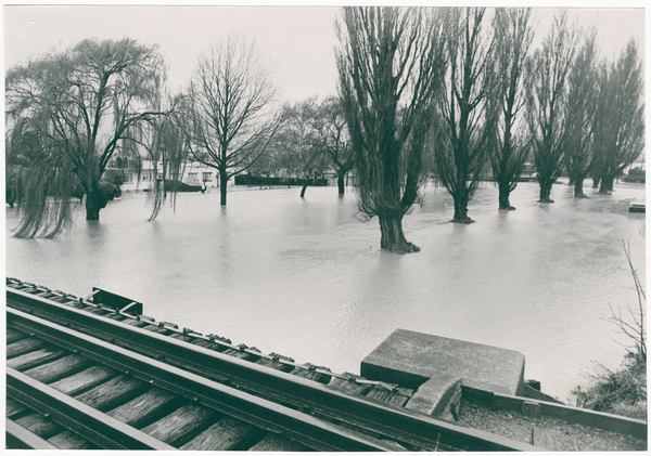 Image of Richardson Terrace and Clarendon Terrace under flood