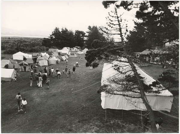 Protest camp, Aramoana