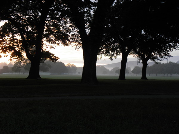 View of Hagley Park from Hagley Park