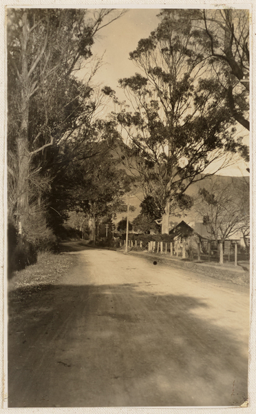 Bridle Path Road, Heathcote