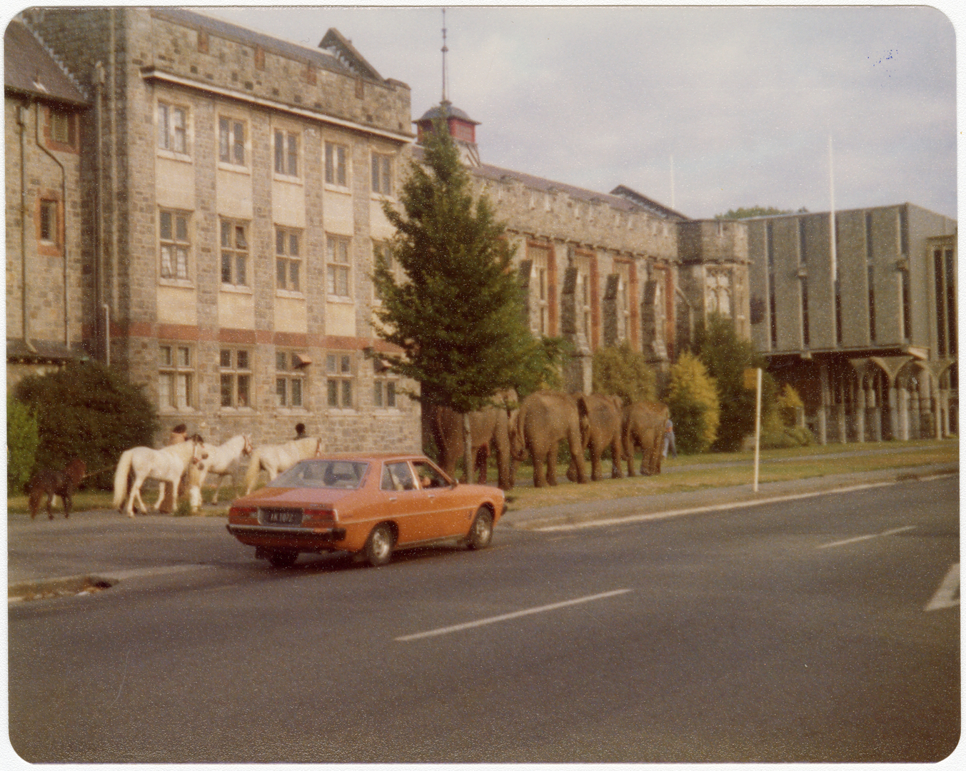 Elephants on Rolleston Avenue. 30 January 1979. Christchurch City Libraries Photo Hunt. CC BY-NC-ND 4.0. CCL-PH20-211